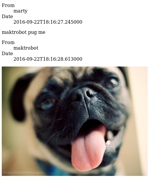 a message exchange. marty asks maktrobot to 'pug me'. maktrobot responds with an image of a pug.